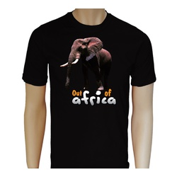 Out of Africa Elephant